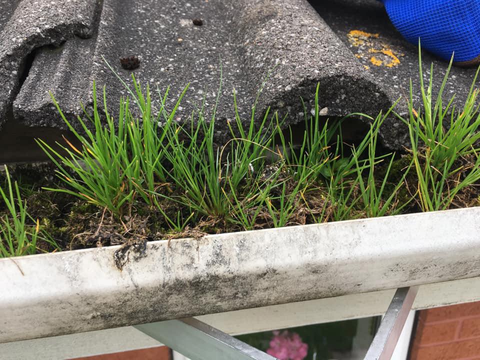 Total Home & Garden Handyman Services | Handyman Crewe | Gutter Clean Before