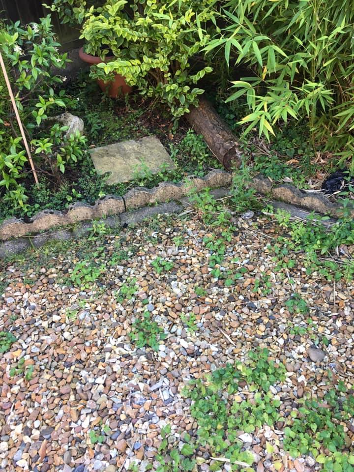 Total Home & Garden Handyman Services | Handyman Crewe | Garden Before